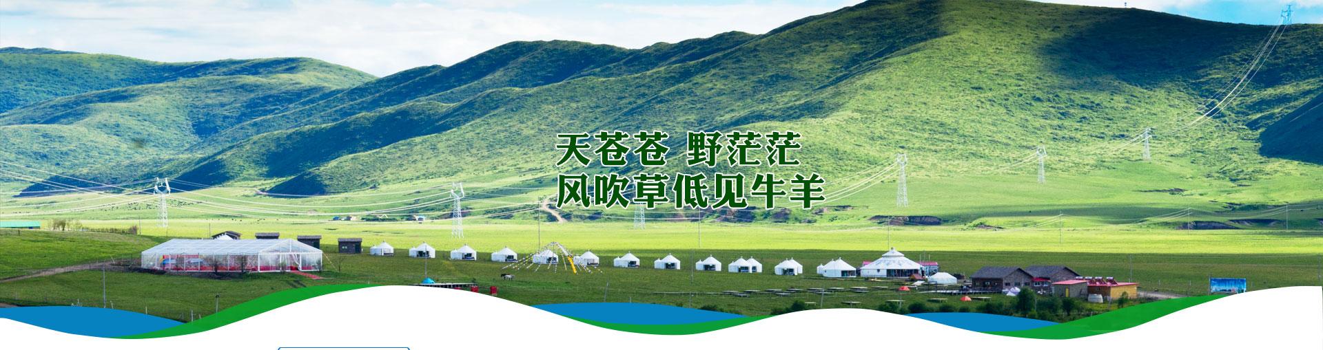 蒙古大营介绍